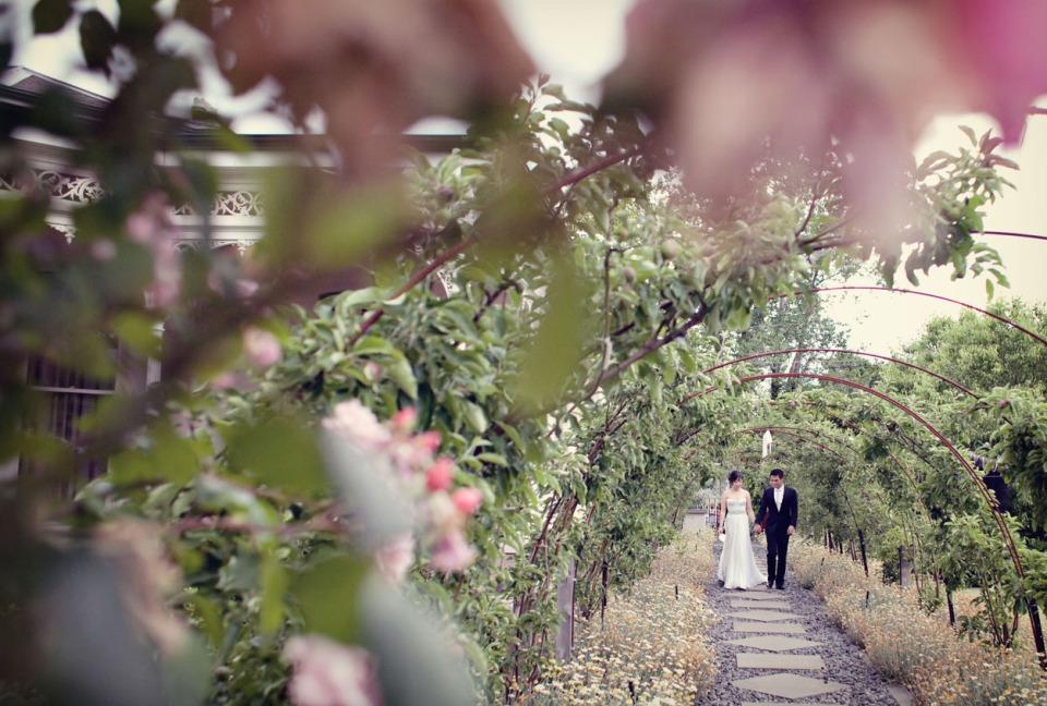 Melbourne backyard garden wedding ceremony
