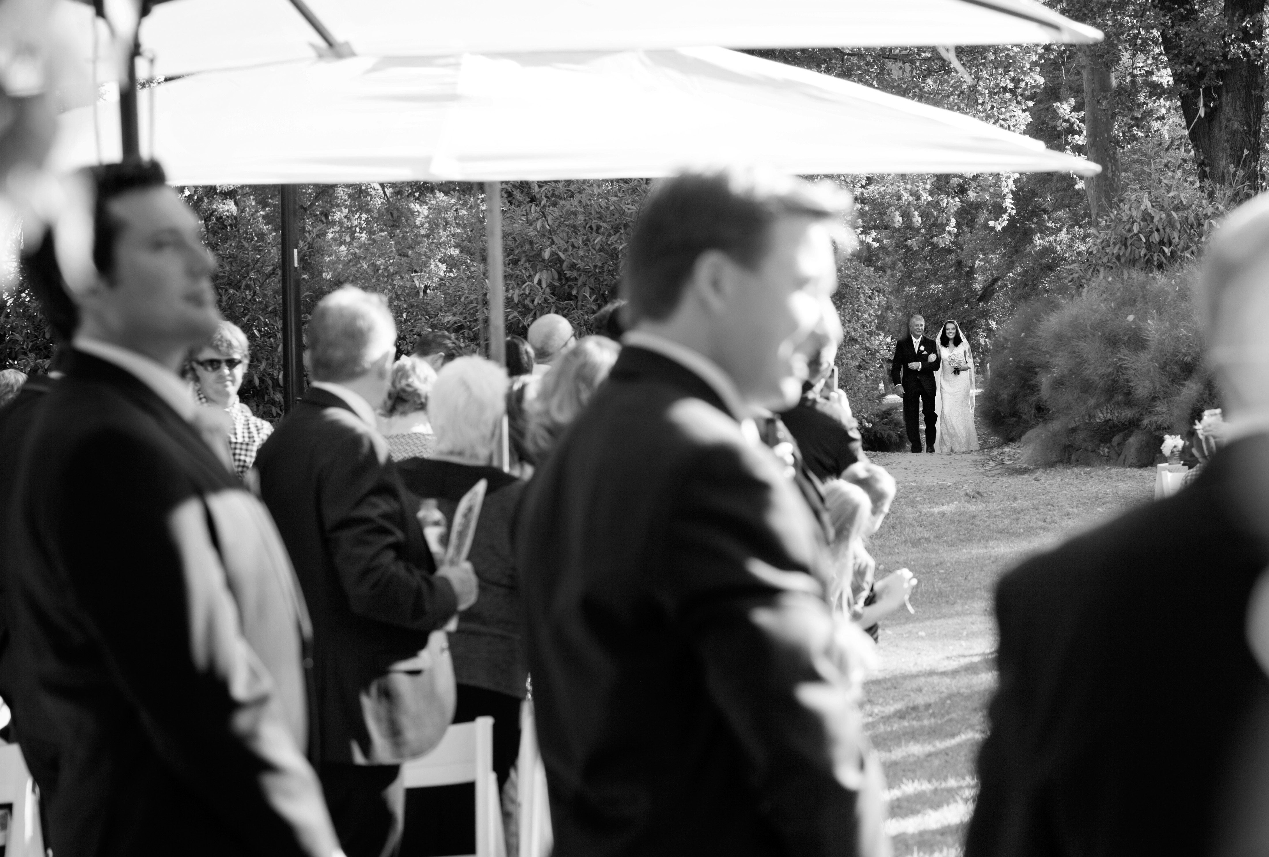 bride walking down the aisle at wedding ceremony in the Fitzroy Gardens