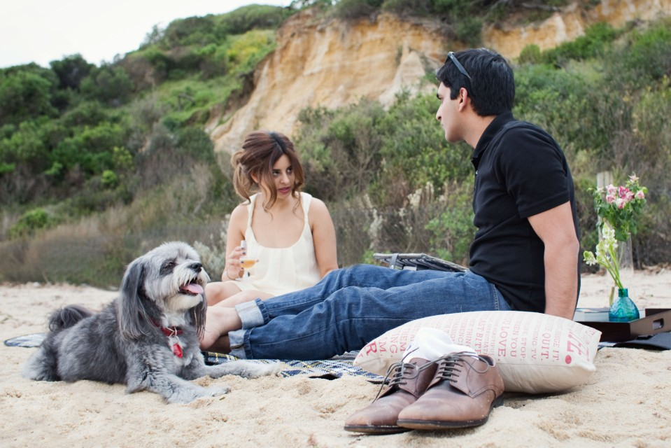 Melbourne picnic engagement photos with dog