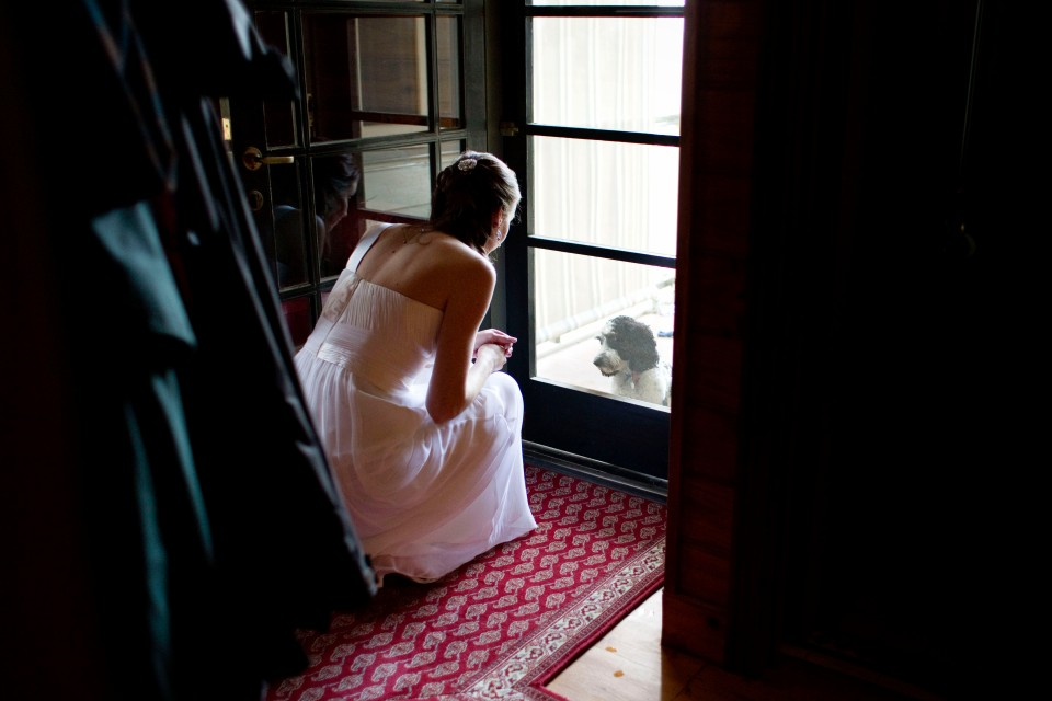 Bride with her dog, reportage wedding photography at Stones of Yarra