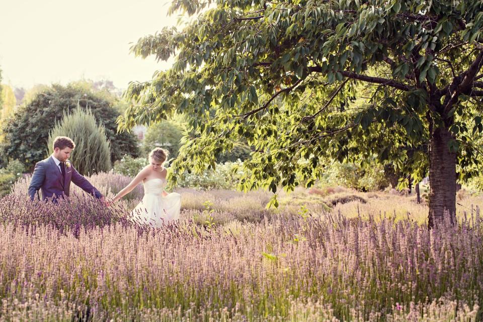 Bride and groom wedding photos at Lavandula swiss Italian lavender farm, Daylesford